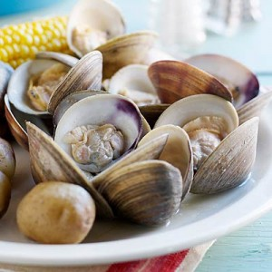 Edible Shellfish